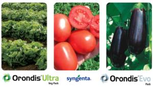 Linea Orondis<sup>®</sup>: efficacia e flessibilità contro le peronospore