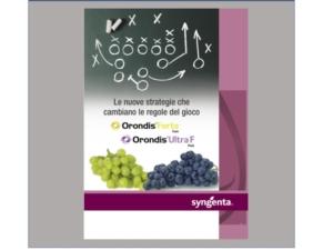 Orondis<sup>®</sup>: due pack di vantaggi