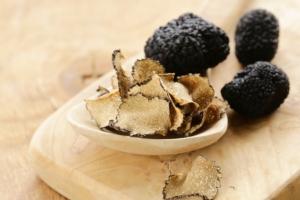 Alberi da tartufo made in Campania - Plantgest news sulle varietà di piante