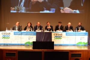 tavolo-dei-relatori-nono-convegno-gestione-del-rischio-in-agricoltura-feb-2017-fonte-cesar