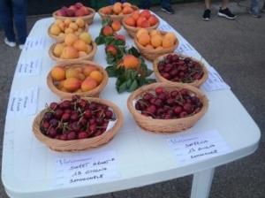 tavolo-frutta-xvi-giornata-frutticoltura-fonte-biolchim
