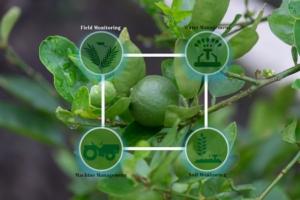 tecnologia-tecnologie-innovazione-agricoltura-by-montri-fotolia-750