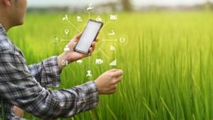 tecnologie-agricoltura-4-0-digitale-tecnologia-by-sodawhiskey-adobe-stock-750x422