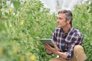 tecnologie-agricoltura-tablet-internet-by-goodluz-fotolia-750