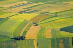 Terreni agricoli, luci e ombre sui prezzi