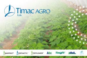 timac-agro-fertirrigazione-e-irrorazione-su-colture-orticole-coperte-fonte-timac-agro-italia