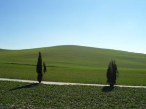 Toscana, in arrivo gli anticipi Pac e Psr