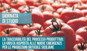 tracciabilita-processo-produttivo-orticole-siciliane-assosementi