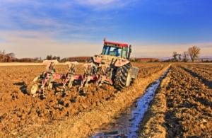 Unimer, la sostanza organica al centro della moderna agricoltura - Fertilgest News