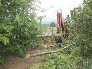 tuscia-ogm-distruzione-campi