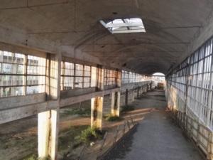 urbanfarm-conegliano-fonte-unibo