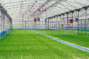 urbinati-irrigatori-doppia-rotaia-429