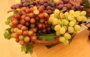 uva-da-tavola-no-semi27gen2017mario-colapietra