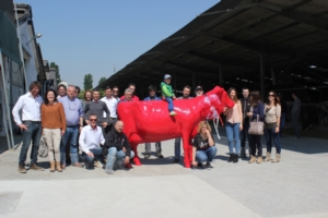 vacca-rossa-lely-2016