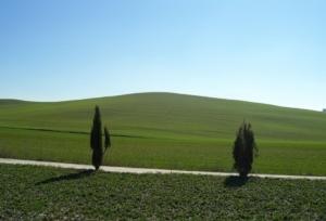 val-d-orcia-paesaggio-by-stefano-acetelli-wikipedia-ok