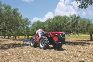 valpadana-90115-is-campo