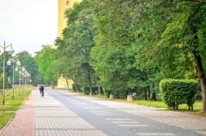 verde-urbano-alberi-giardini-by-shadowmoon30-fotolia-750