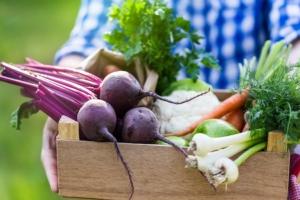 verdure-ortaggi-freschi-orticole-by-istetiana-fotolia-750x500
