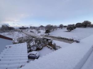 verdure-sotto-neve-17-gen-2021-coldiretti-puglia