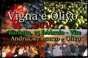 vigna-e-olivo-2016-new