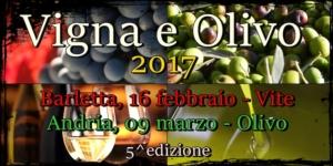 vigna-e-olivo-2017