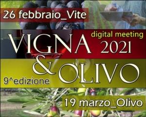 EVENTO ONLINE - Vigna & Olivo 2021: tra innovazione e sostenibilità