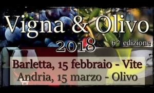 vigna-olivo-2018