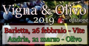 vigna-olivo-2019-750x393