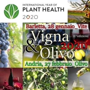 Vigna & Olivo 2020: innovazione e sostenibilità nella moderna gestione dei vigneti
