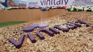 vinitaly2018-veronafiere-fotoennevi-2018