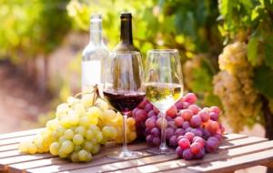vino-bianco-rosso-uva-bicchieri-bottiglie-by-caftor-adobe-stock-750x475