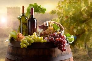 vino-bottiglie-vigneto-vite-uva-filiera-by-pfpgroup-adobe-stock-750x499