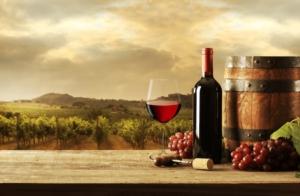 vino-con-bicchiere-hascon-m10ad-fonte-green-has-via-shutterstock-155692601