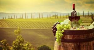 Digitale + sostenibilità: dal campo al calice di vino