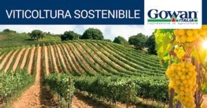 viticoltura-sostenibile-fonte-gowan