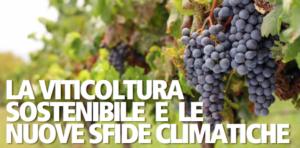 viticoltura-sostenibile-nuove-sfide-climatiche-convegno-evento-fonte-biogard