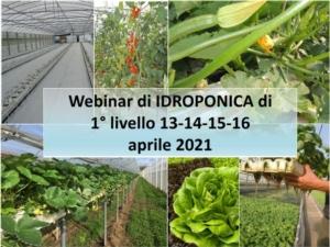 webinar-corso-idroponica-fritegotto-aprile-2021