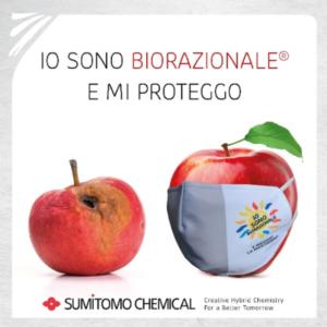 WEBINAR - Sumitomo e Siapa, le novità del catalogo Biorazionale<sup>®</sup>