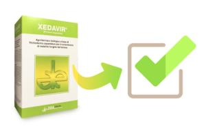 Xedavir: fungicida biologico per contrastare le malattie del terreno
