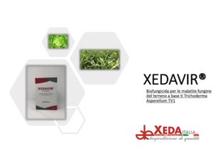 Per il controllo dei patogeni terricoli: Xedavir
